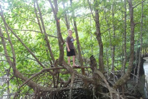Eli climbed through the forest to look for monkeys.