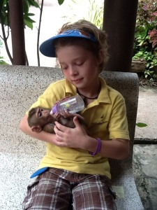 One of my kids favorite memories was feeding baby monkeys whose mother had been killed.