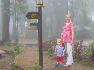 Doi Inthanon: the tallest mountain in Thailand is surrounded by cool mist and fog.