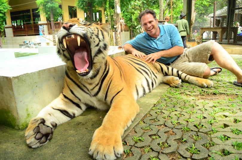 tiger growl.jpg