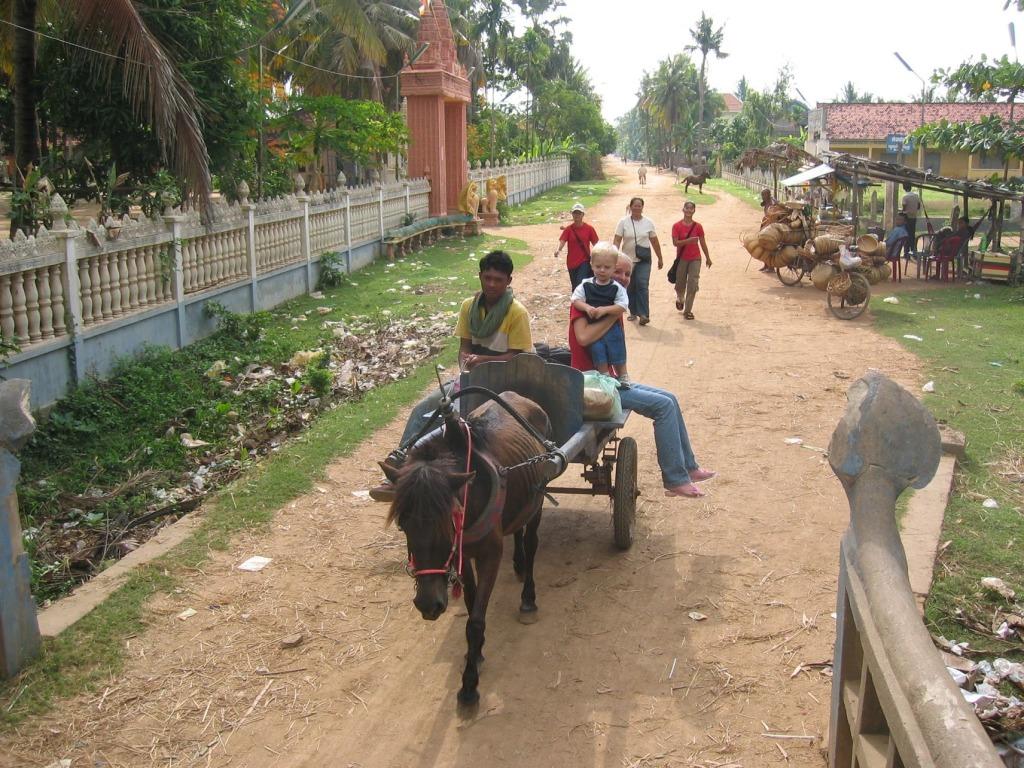 transport-on-horse